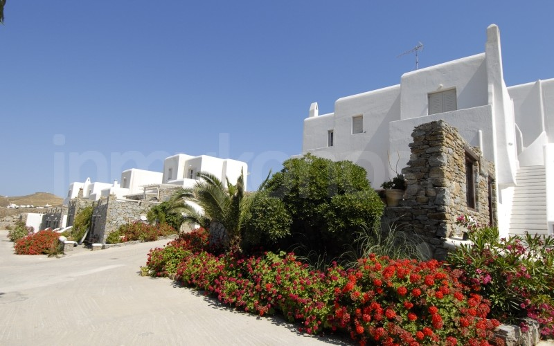 Ftelia Bay Hotel - _MYK0465 - Mykonos, Greece